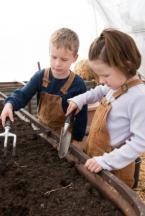 Get Your Kids Gardening Today!