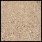 Beach Sand New Jersey