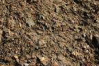 Dirt New Jersey