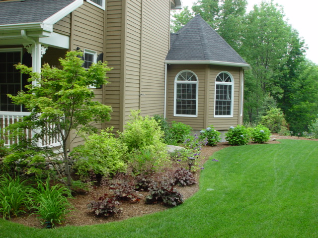 Landscapes by tom for Simple landscaping plants